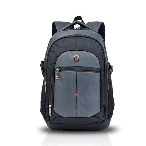 FANDARE Zaino per Scuola Computer Portatile un MacBook Pro Tablet Notebook Laptop 15.6'' Viaggi Daypack School Escursionismo Premium Bag Leggera Slim Oxford Grigio Chiaro