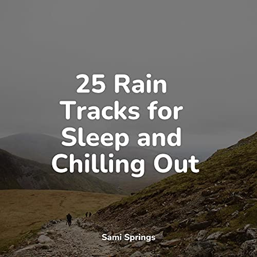 Ambient Nature project, Nature Sounds for Sleep and Relaxation & The Rain Library