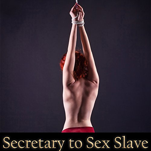 Secretary to Sex Slave audiobook cover art