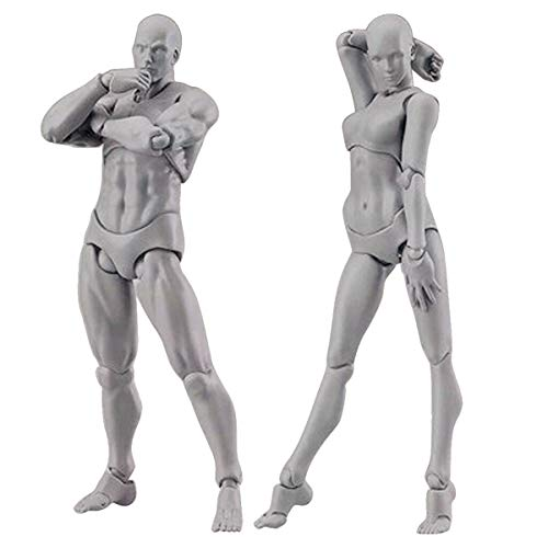 BYIA Body Kun Doll, Artists Manikin Blockhead Jointed Mannequin Drawing Figures for Figure Model Male+Female Set (Gray Colored Version)