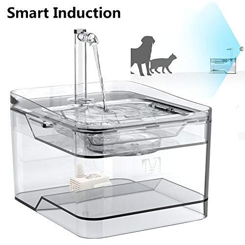 Wangyan 123 Fuente Inteligente para Mascotas 2020 - Fuente