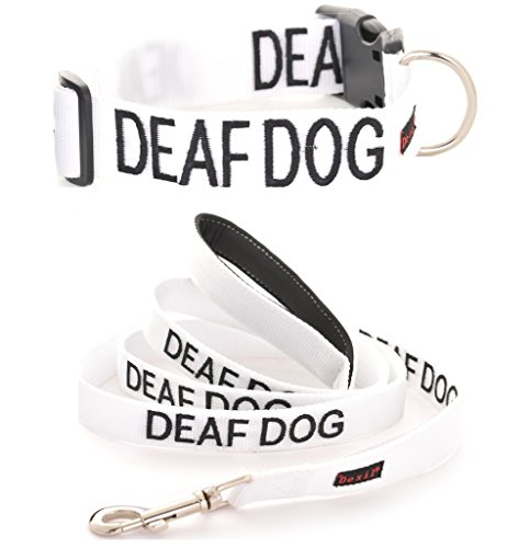 DEAF DOG White Color Coded L-XL S-M Buckle Dog Collar and 2 4 6 Foot Padded Leash Sets (No/Limited Hearing) PREVENTS Accidents By Warning Others of Your Dog in Advance (L-XL Collar + 4 Foot Leash)