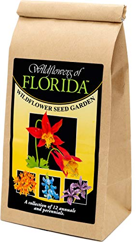 Florida Wildflower Seed Mix - A Beautiful Collection of Twelve annuals and perennials - Enjoy The Natural Beauty of Florida Flowers in Your own Home Garden