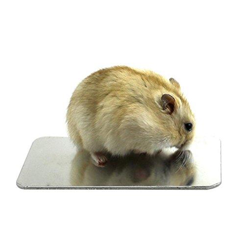 iBàste Conejo Hámster Placa Fría Dedicada Al por Mayor Suministros Disipador de Calor Aleación de Aluminio Grande Placa de Disipación de Calor para Mascotas Pequeñas