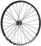 SHIMANO RUEDAS Rueda Tras. XT M8120 29' E12/148MM Ciclismo, Adultos Unisex, Negro (Negro)