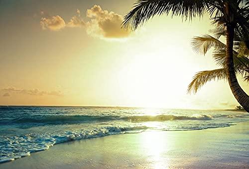 Fondo de fotografía de Playa Tropical Junto al mar Verano Boda bebé cumpleaños Ducha Fiesta Foto Estudio telón de Fondo A25 10x7ft / 3x2,2 m