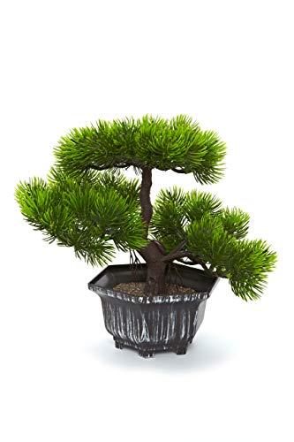 HEITMANN DECO Bonsai - künstliche Pflanze - Bonsai - Blume - Grüne Pflanze mit Topf - Kunstblume - Dekoration