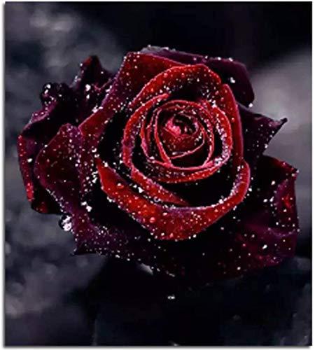 ParNarZar 5D Diamant Malerei Full Bilder, Rose 35 x 35 cm, Blume DIY Diamond Painting Set Strass Stickerei Diamant Malerei Handarbeit Basteln Voller Diamant Kreuzstich Mosaik Gemälde