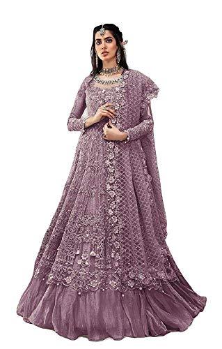 Alamara Fashion Ready to Wear Indian/Pakistani Style Party Wear Net...