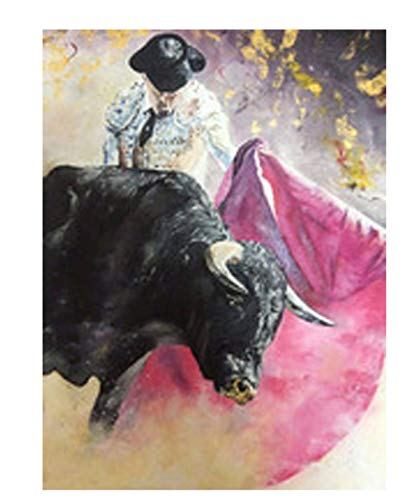 Pintura Por Números Arte Corrida De Toros Pintura Por Número Pintura Decorativa Del Corredor Casero Creativo