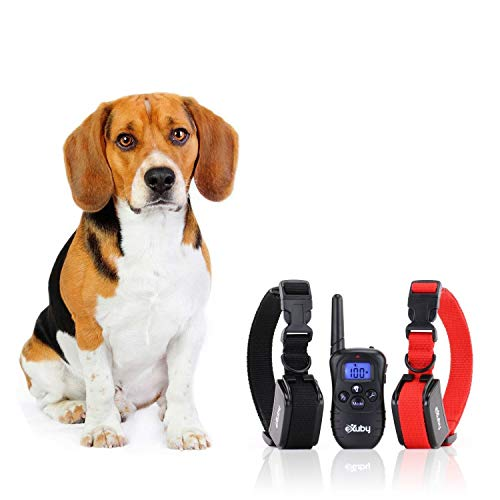 eXuby 2X Shock Collar for Small Dogs with 1 Remote and 4 Straps - 3 Modes: Sound, Vibrate and Shock - Rechargeable Batteries Great for Training Two Dogs