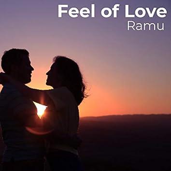 Feel of Love