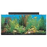 SeaClear 30 gal System II Acrylic Aquarium, 36 by 12 by 16', Black