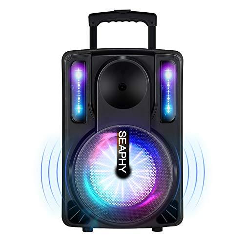 Mobile PA Sound Anlage, SEAPHY PA System mit 2 Funkmikrofone, Akku Bluetooth...