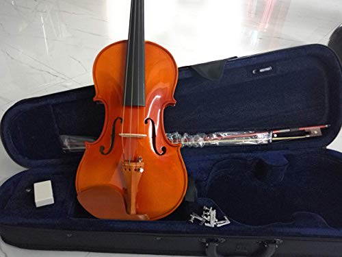 The Violin Store Intermediate New 4/4 Violin (Deep Brown)