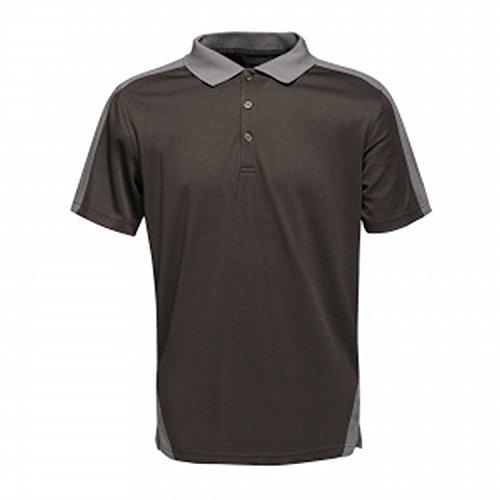 Regatta Polo Homme Évacuant Rapidement L'humidité avec col boutonné Contrast T-Shirts/Polos/Vests Homme Black/Seal Grey FR: M (Taille Fabricant: M)