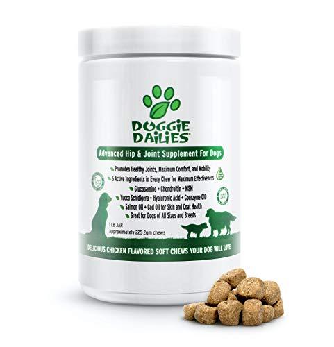best arthritis supplements for dogs