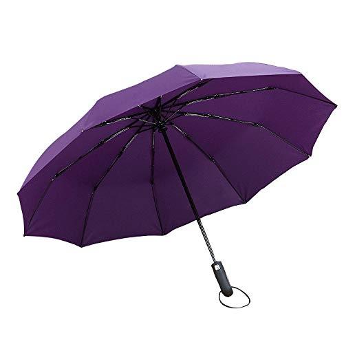 Sonnenschirm Regenschirm Super Winddichter Regenschutz Automatischer Regenschirm Regentag Klappschirm 10 Knochen Frauen Herren Business Auto Regenschirm Lila