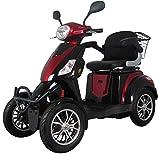 Scooter eléctrico de movilidad todo terreno extra estabilidad 4 ruedas motor 800 watt 25 km/h 60V...