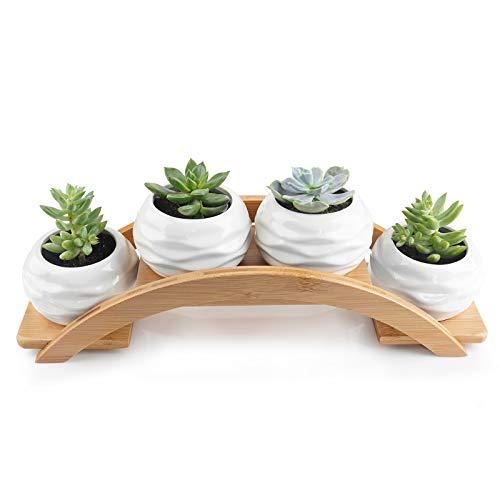 ANOTION Macetas de cerámica para suculentas, plantas cactus, pequeñas macetas blancas, maceteros para bonsáis, macetero decorativo con bandeja de bambú