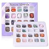 DIYARTS 20 Pcs Colección de Roca de Cristal Mineral Natural Fósil Mineral Adorno Piedra Preciosa de Cristal para Educación Infantil Temprana Decoración del Hogar