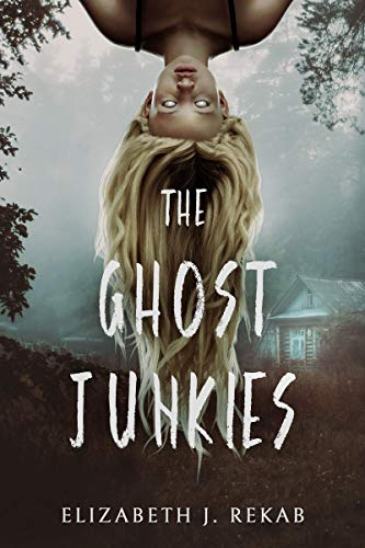 The Ghost Junkies: A Young Adult Paranormal Thriller