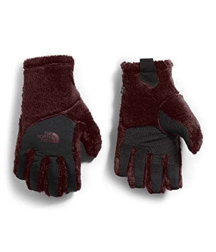 The North Face Womens Osito Etip¿ Gloves