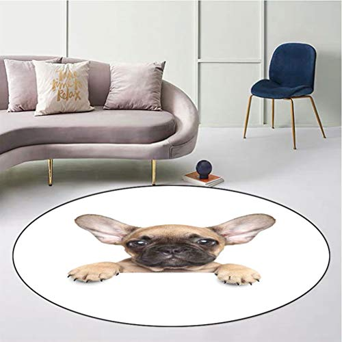 """Bulldog Round Floor Mat, Pedigreed Young Puppy Close up Photo Best Friend Pet Lover Print Safe for All Surfaces Home Playroom, Diameter 43"""" Sand Brown Black and White"""
