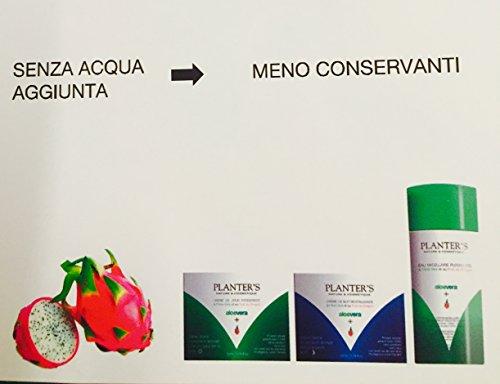 Planter's Crema Viso Notte Aloe Vera e Frutto del Drago 50...