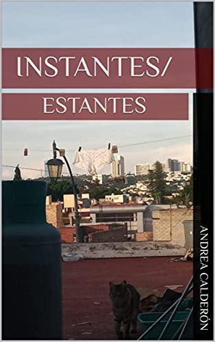 INSTANTES/ESTANTES (Spanish Edition)