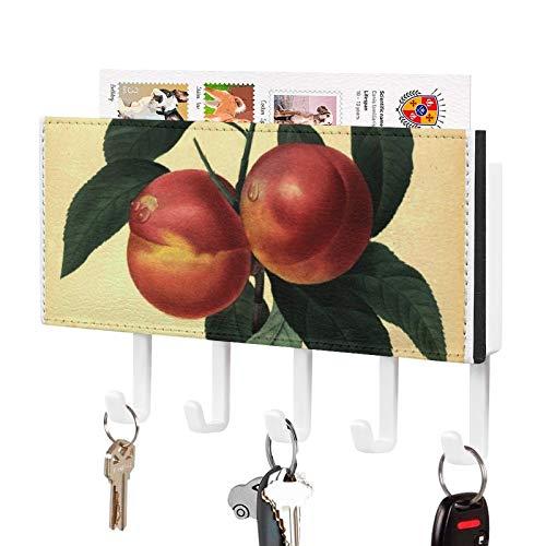 Soporte de pared para llaves organizador, diseño botánico de melocotón P J Redouté de pared decorativo para entrada, almacenamiento, sala de estar, pasillo, oficina