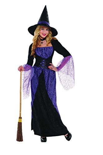 Christy's 996224 Pretty Potion Witch Costume, Size 14-16
