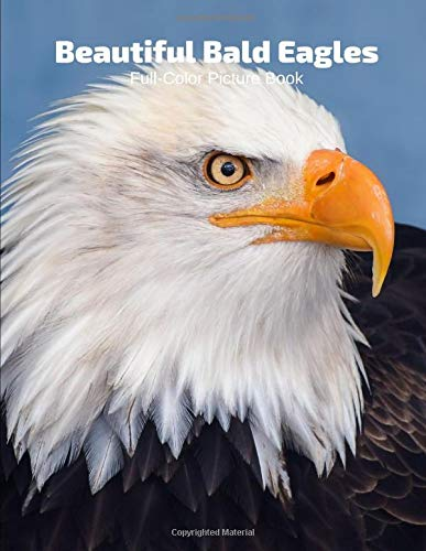 Beautiful Bald Eagles Full-Color Picture Book: American Birds Photography Book- Birds Nature Animals