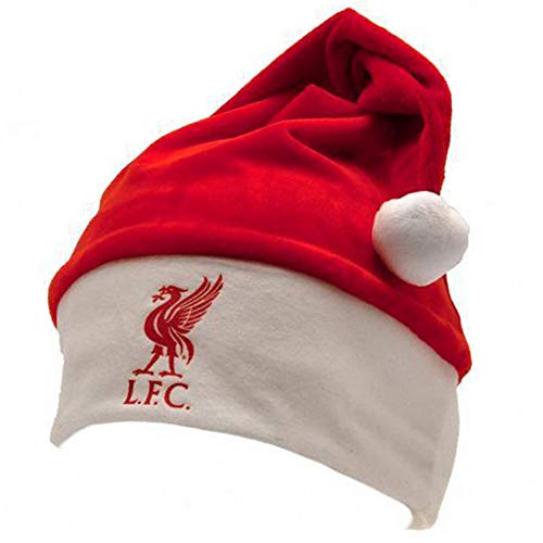 Liverpool F.C. Christmas Crest Hat