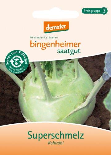 Bingenheimer Saatgut - Kohlrabi weiß Superschmelz - Gemüse Saatgut / Samen