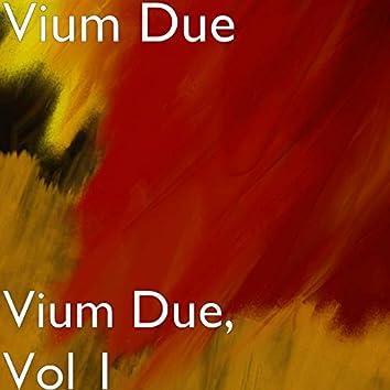 Vium Due, Vol 1