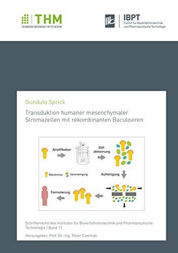 Transduktion humaner mesenchymaler Stromazellen mit rekombinanten Baculoviren (Schriftenreihe des Institutes für Bioverfahrenstechnik und Pharmazeutische Technologie)