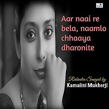 Aar Naai Re Bela, Naamlo Chhaaya Dharonite