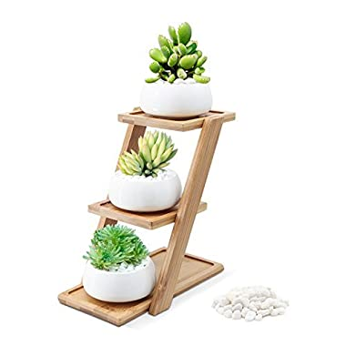Puaida 3.15 Inch Small Modern Round White Ceramic Succulent Plant Pot, Planter for Succulent Plants, Small Cactus and Herbs with Bamboo Stand and Stone for Room Decor- Set of 3