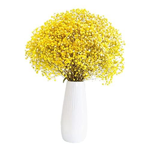 Flores secas de gypsophila natural de 70 cm flores secas para bebé ramos de plantas para decoración del hogar accesorios para fotos decoración de bodas flores secas de gypsophila para