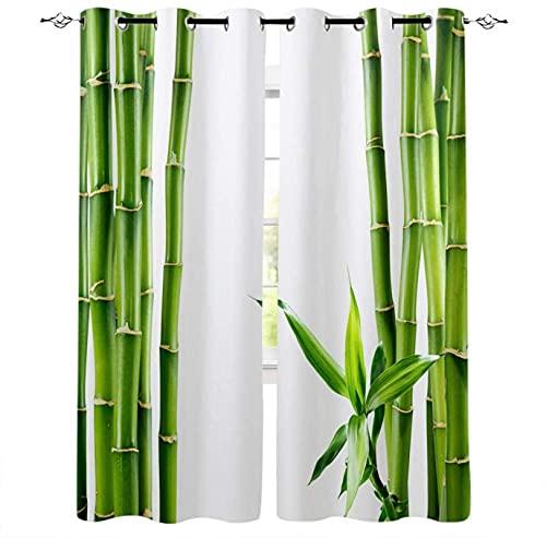 LUOWAN Cortina Opaca Microfibra Infantil - 264x160 cm - Verde bosque de bambú paisaje plantas. - 95% Opaca Cortina aislantes de frío y Calor Decorativa con Ojales Estilo para Salón Habitación y Dormit