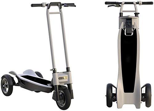 RDJM Bici electrica, Bicicleta eléctrica 500W, 48V 10Ah Batería Fat Tire Bicicleta...