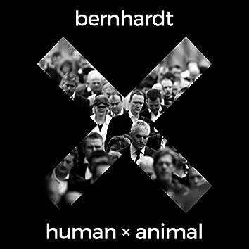Human X Animal