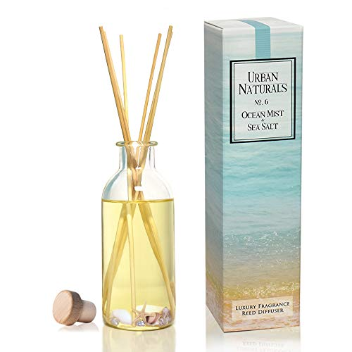 Urban Naturals Ocean Mist & Sea Salt Reed Diffuser Set | Made with Essential Oils & Real Botanicals | Decorative Air Freshener for Large Rooms | Beautiful Home Décor Makes a Great Gift
