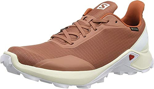 Salomon Alphacross GTX, Zapatillas de Trail Running para Hombre, Gris (Cedar Wood/Vanilla Ice/White), 44 2/3 EU