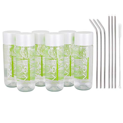 Genussleben Voss Wasser Lime Mint Sparkling, Mineralwasser Limette Minze, mit Kohlensäure, 6 Flaschen inkl. Alu Strohhalme
