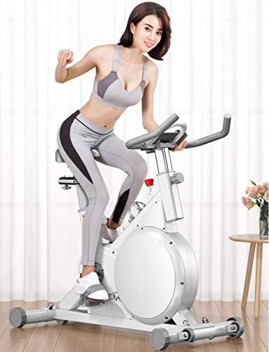 BXU-BG. Indoor Cycling Bike, silenziosa Trasmissione a Cinghia Cyclette con Il Monitor LCD for la casa Cardio e Allenamento, Regolabile Antiscivolo Manubrio e Sedile Imbottito