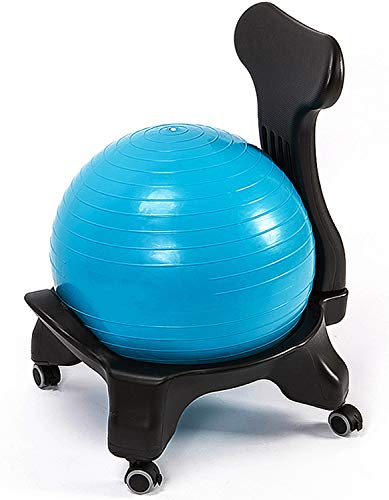 WUQIAO Multifunctional Yoga Ball Chair, Detachable Correcting Sitting Posture to Coordinate The Spine, Suitable for Office, Living Room, Classroom Or Gym