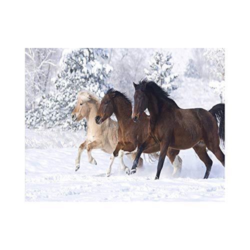 DIY Schilderen op nummer kinderen schilderen kitSnowfield paard handgeschilderd frameloos schilderij 40x50CM