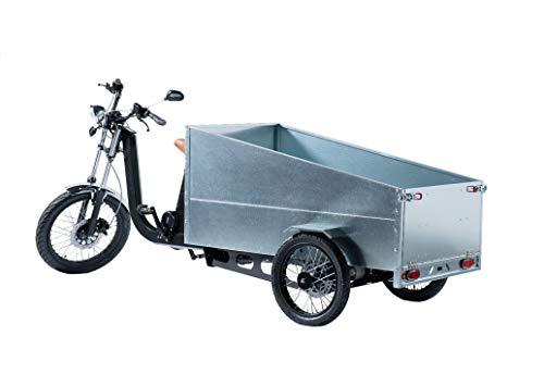 TRIPS Triporteur électrique 250 Kg de Charge. Modules : Street Food Truck Cuisine- Trans palettes – Pickup – Cargo Livraison – Taxi –